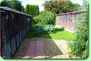 Boarding Cattery Bottom Garden